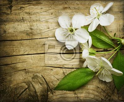 Spring Blossom na tle drewniane
