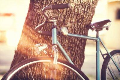 Naklejka Stary rower oparty o drzewo