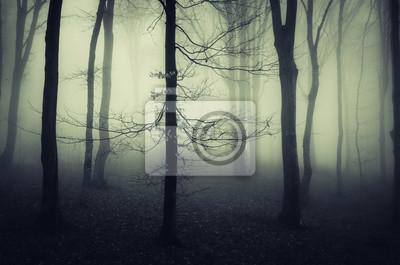straszne drzewo w mglistym lesie