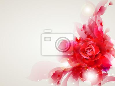 Streszczenie miękkie tło z czerwoną różą