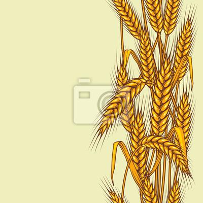 Streszczenie teksturowane pole pszenicy. Szwu. Vector.