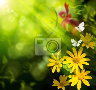 Streszczenie tle lato art. Kwiat i motyl