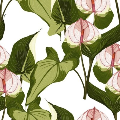 Naklejka Summer colorful hawaiian seamless pattern with tropical plants and Spathiphyllum flowers on white background.