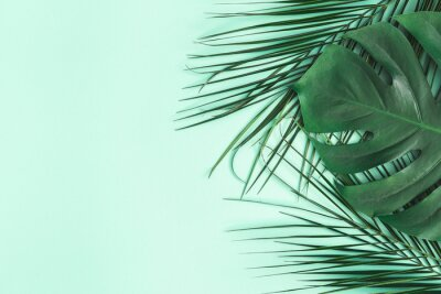 Naklejka Summer composition. Palm leaves on mint background. Summer concept. Flat lay, top view, copy space