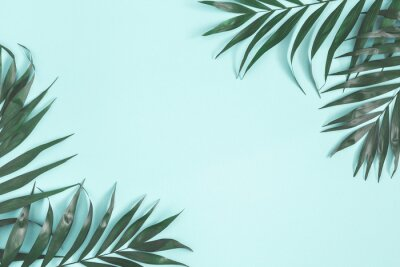Naklejka Summer composition. Palm leaves on pastel blue background. Summer concept. Flat lay, top view, copy space
