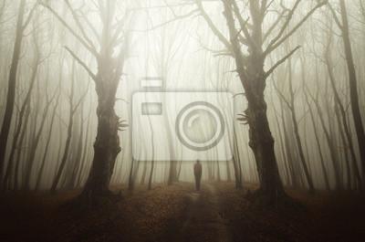 Surrealistyczna droga leśna z cieniem ducha, scary halloween krajobraz