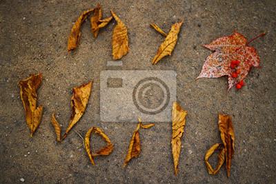 Świat jesienią kolorowe