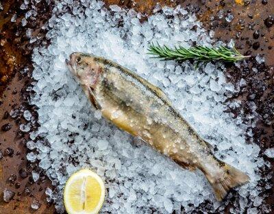 Naklejka świeża ryba