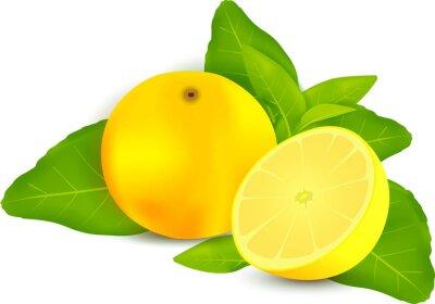Naklejka Świeże cytryny z liśćmi białym tle