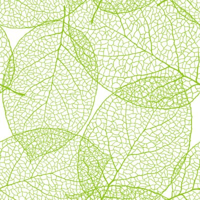 Świeże zielone liście w tle - ilustracji wektorowych