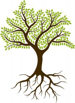 Naklejka sylwetka drzewa