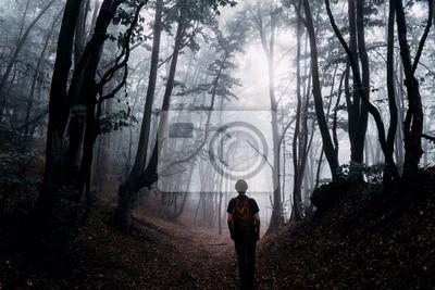 sylwetka mężczyzny w magicznym lesie, ciemny krajobraz fantasy
