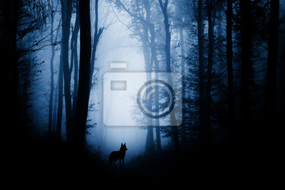 sylwetka wilka w lesie fantasy ciemny