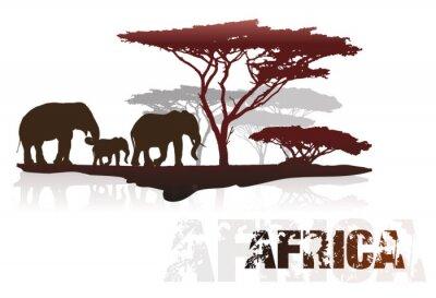 Naklejka Sylwetki drzew Afryki i słoni