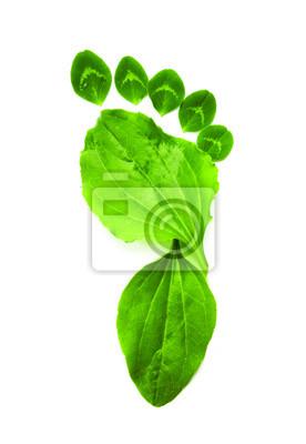 Symbol art zielonym ekologia foot print