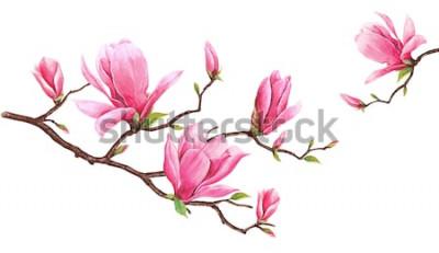 Naklejka Szablon karty z akwarela magnolii. Ręcznie rysowane malarstwo na białym tle. Ilustracja do kartki z życzeniami, zaproszeń i innych projektów drukarskich. Jest miejsce na umieszczenie wiadomości.