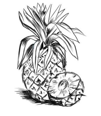Naklejka szkic do pineaple