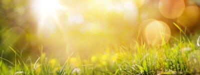 Naklejka sztuka streszczenie tło wiosna lub lato tła ze świeżych g