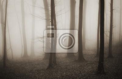 tajemniczy las z mgły i ciemnej sepii drzew