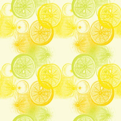 Naklejka Tapeta szwu z ręcznie rysowane pomarańczy cytrusów. Drawi