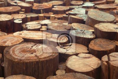 Teak drewna pniaków tło z wąskim naciskiem