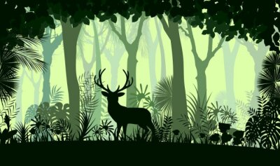 Naklejka tła lasu z drzew dzikich jeleni