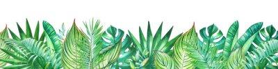 Naklejka Tło z akwarela roślin tropikalnych. Przydatny do projektowania banerów, kartek, życzeń, zaproszeń i wielu innych.