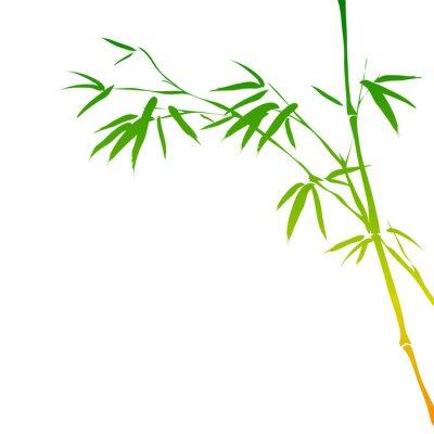 Naklejka tło z bambusa oddziałów