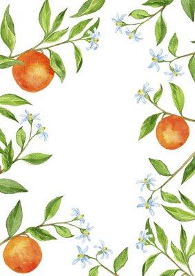 Naklejka tło z gałęzi drzew owocowych, kwiatów, liści i pomarańczy