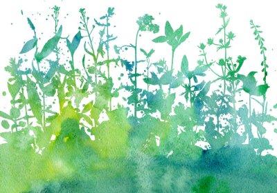 Naklejka Tło z rysunku ziół i kwiatów