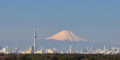 Naklejka Tokyo city view with Tokyo sky tree and Mountain Fuji