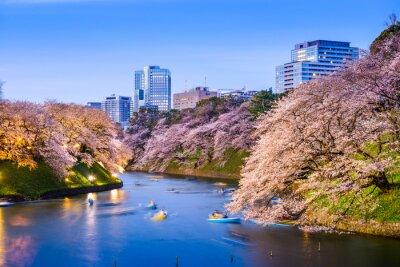 Naklejka Tokyo Imperial Fosa na wiosnę
