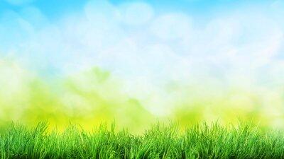 Naklejka trawa w tle