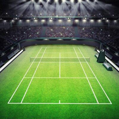 trawy kort tenisowy i stadion pełen kibiców