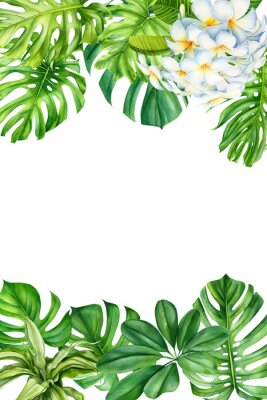 Naklejka tropical leaves and flowers on an isolated background, greeting cards with space for text, watercolor painting, botanical illustration, floral design, plumeria, palms, monstera