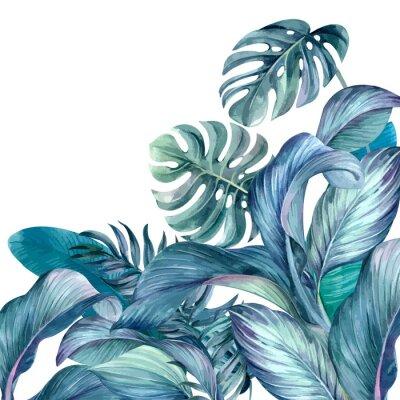 Naklejka Tropical leaves background