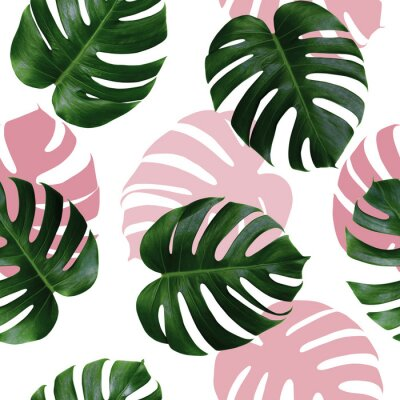 Naklejka Tropical leaves monstera,green leaf with pink shadow on white background.Monstera seamless pattern colorful illustration pink leaf,tree tropical exotic leaf for wallpaper textile vintage Hawaii style
