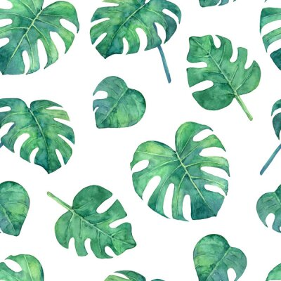 Naklejka Tropical  seamless pattern with monstera leaves. Hand painted in watercolor.