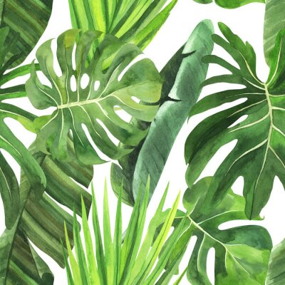 Naklejka  Tropical seamless pattern with tropical leaves, palm banana monstera on an isolated white background, watercolor jungle drawing, stock illustration.