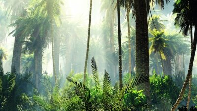Naklejka Tropikalna dżungla we mgle. Palmy rano.