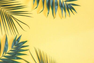 Naklejka Tropikalna palma opuszcza na żółtym tle. Koncepcja lato. Płaskie świeckich, widok z góry, skopiuj miejsce