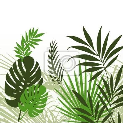 Tropikalne liście 01