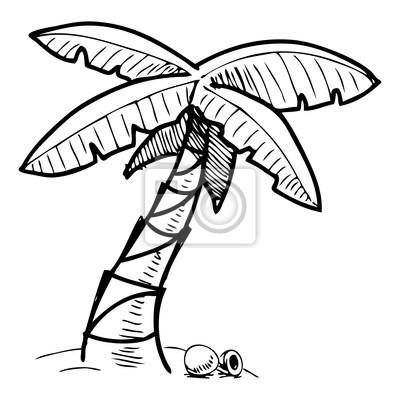 Tropikalne palmy ilustracji szkic