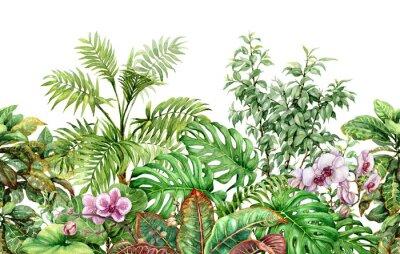 Naklejka Tropikalne rośliny linii wzór bez szwu