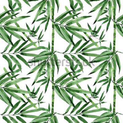 Naklejka Tropikalny liść bambusowego drzewa wzór w akwarela stylu. Aquarelle dzikie liście na tle, tekstury, wzór opakowania, ramki lub granicy.