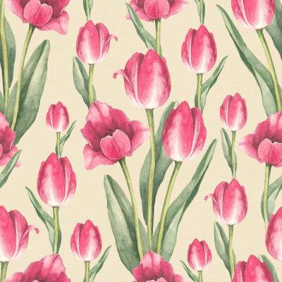 Naklejka Tulipan kwiaty ilustracji. Akwarela szwu
