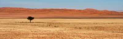 Naklejka Typical namibian landscapes and deserts