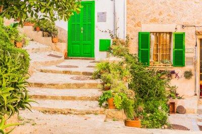 Naklejka Typowy wystrój roślin na starym tamtejsze miejscowości śródziemnomorskiej