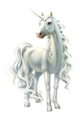 Naklejka unicorn, full-length isolated on white