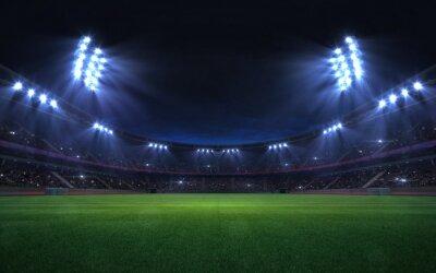 Naklejka universal grass stadium illuminated by spotlights and empty green grass playground, grand sport building digital 3D background advertisement background illustration